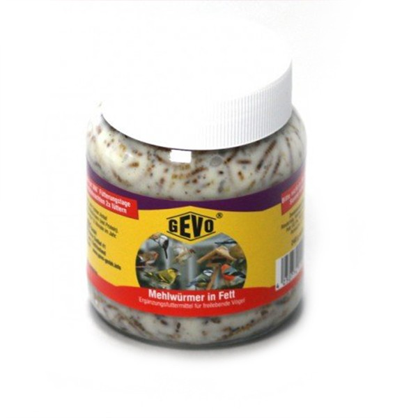 GEVO Mehlwürmer in Fett im Glas 240 g