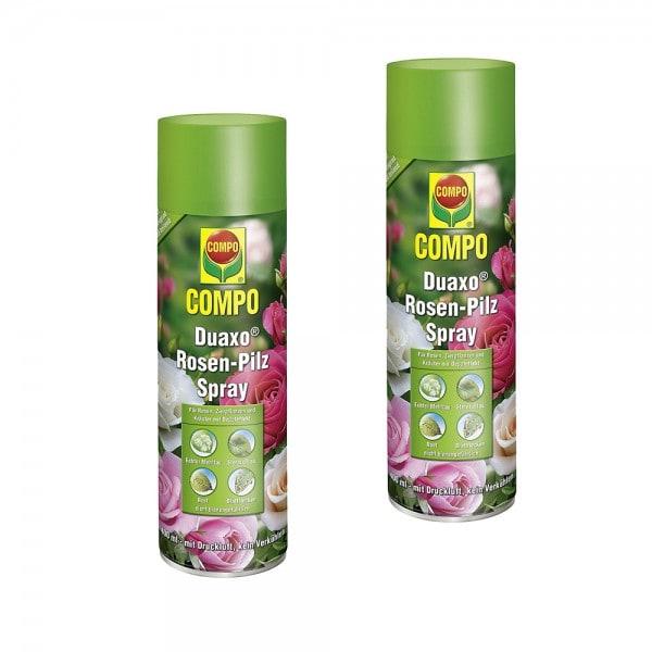 COMPO Duaxo Rosen-Pilz Spray 2 x 400 ml