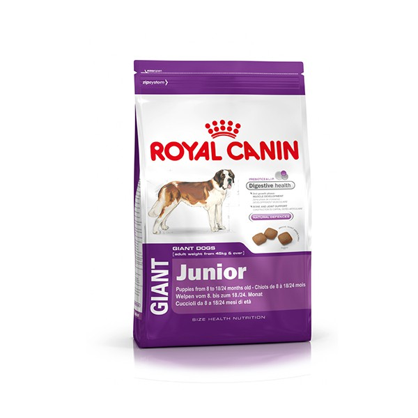royal canin giant junior 31 4 kg royal canin giant size health nutrition royal canin. Black Bedroom Furniture Sets. Home Design Ideas