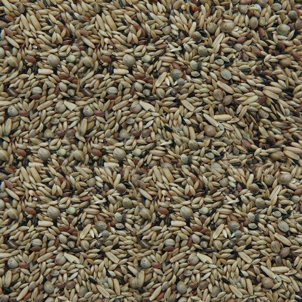 Matador Kanarien Züchter-Mischung ohne Rübsen 2,5 kg