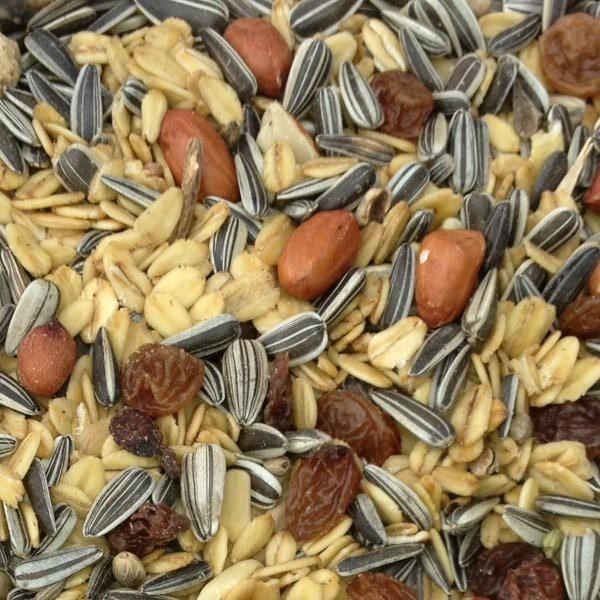 Pauls Mühle Wildvogelstreufutter Spezial 10 kg Beutel