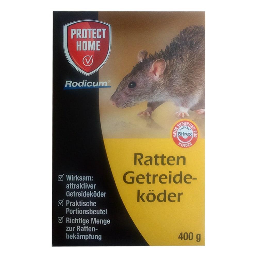 bayer protect home ratten und m usek der ratten. Black Bedroom Furniture Sets. Home Design Ideas